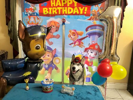 paw patrol party planner